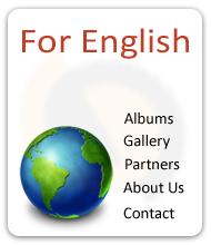 language
